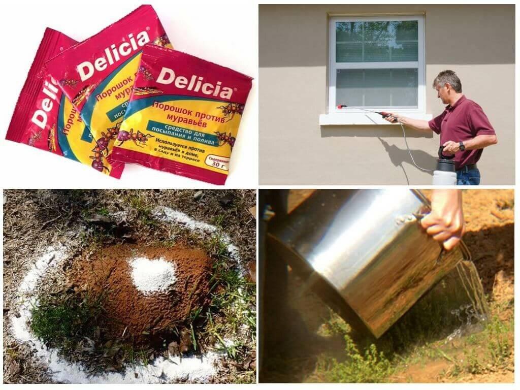Delicia (делиция) порошок против муравьев, 30 г