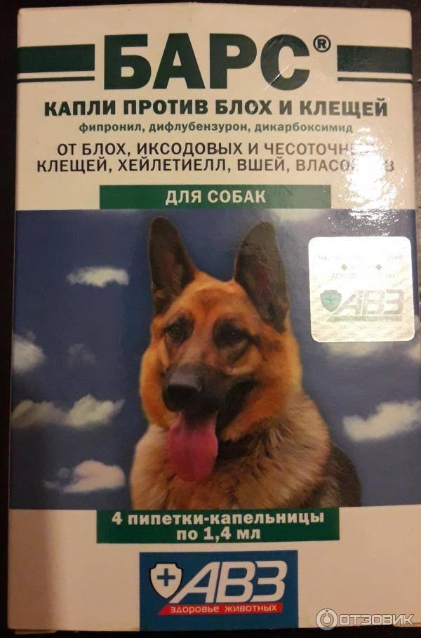 Барс (капли) для собак и кошек | отзывы о применении препаратов для животных от ветеринаров и заводчиков