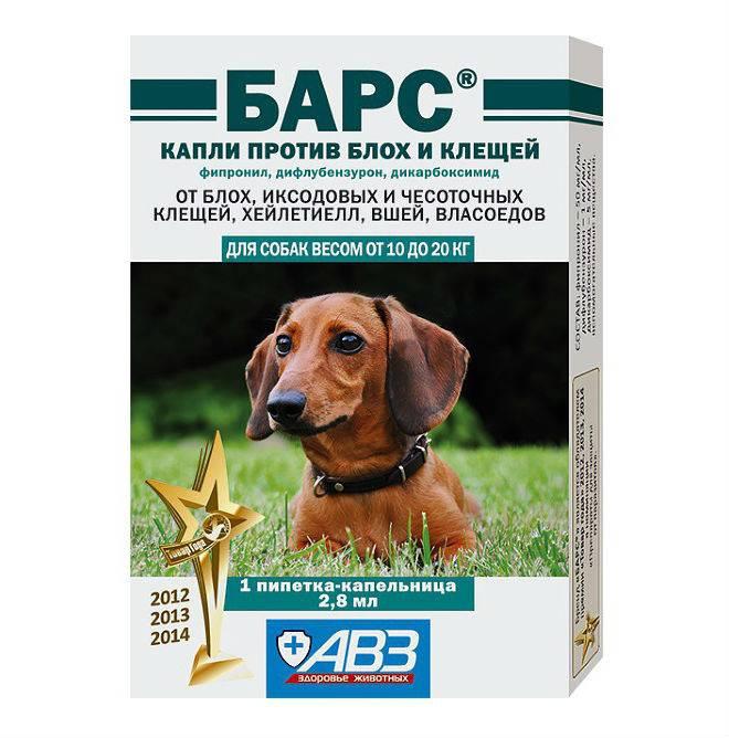 Капли от клещей для собак: какие лучше   отзывы, рейтинг