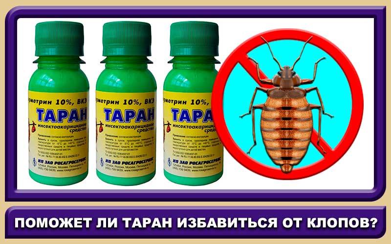 Таран — инструкция к незаменимому инсектоакарициду в быту и хозяйстве