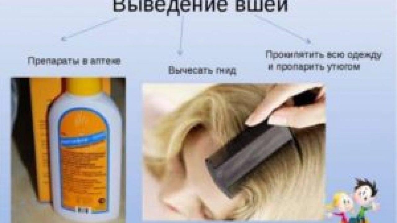 Как обработать шапку от вшей