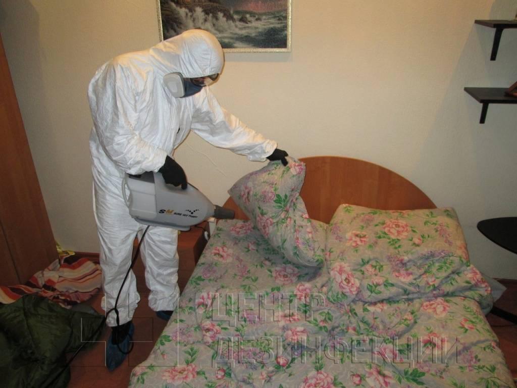 Средства от клопов в домашних условиях — популярные препараты и правила обработки помещений