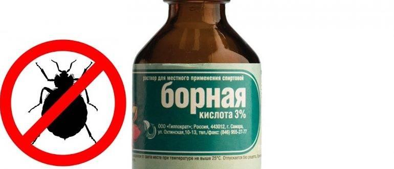 Народные средства от клопов: чего боятся кровососы, чем их можно травить, рецепты средств русский фермер