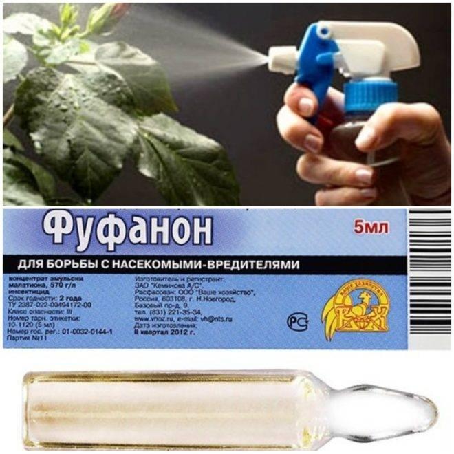 Фуфанон от клопов инструкция к препарату - отзывы про применение