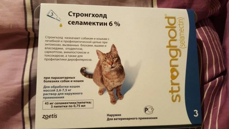 Стронгхолд для кошек — инструкция по прменению, отзывы