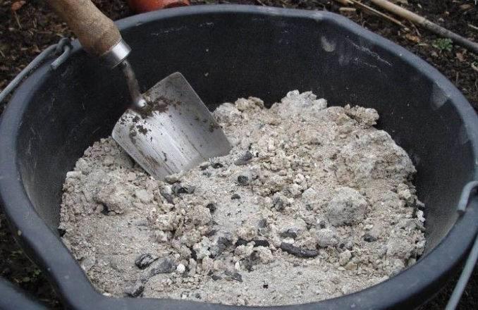 Табачная пыль – средство от тли, слизней и других вредителей