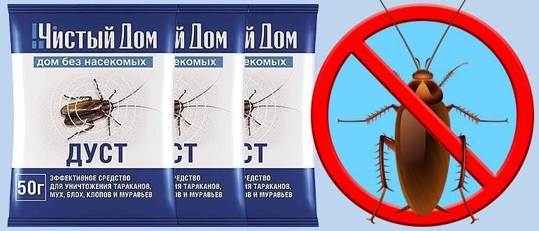 Дуст от тараканов: обзор самых эффективных средств