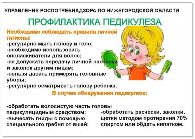 Методы эффективной профилактики педикулеза у детей
