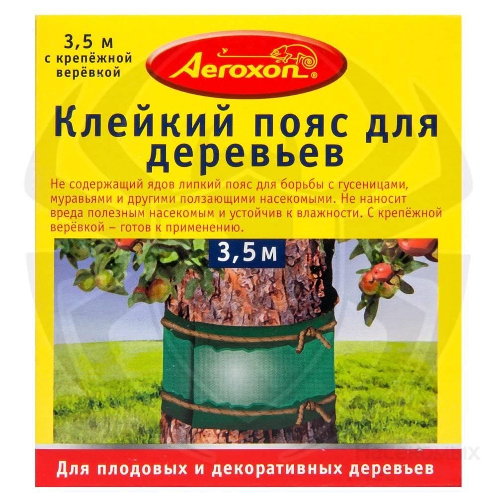Ловушки для муравьев на деревьях своими руками. ловчие пояса для яблонь — защита от вредителей