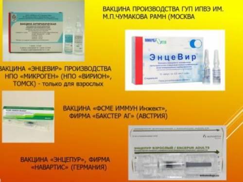 Прививка от клещевого энцефалита: кому и как проводится