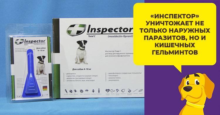 Капли инспектор от клещей для собак: состав капель, инструкция по применению, противопоказания и отзывы
