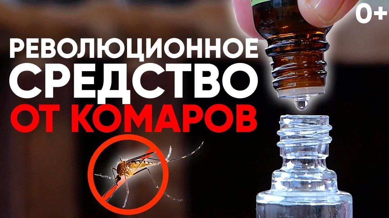 Легкие и безопасные способы защиты от комаров без химических репеллентов