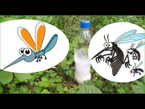 Ловушки для комаров: виды, как сделать своими руками из пластиковой бутылки или других подручных средств, отзывы