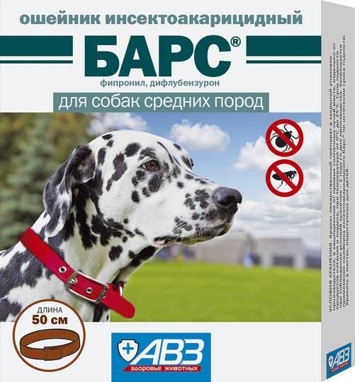 Лучшие ошейники от клещей для собак 2018-2019: обзор с ценами, советы по выбору