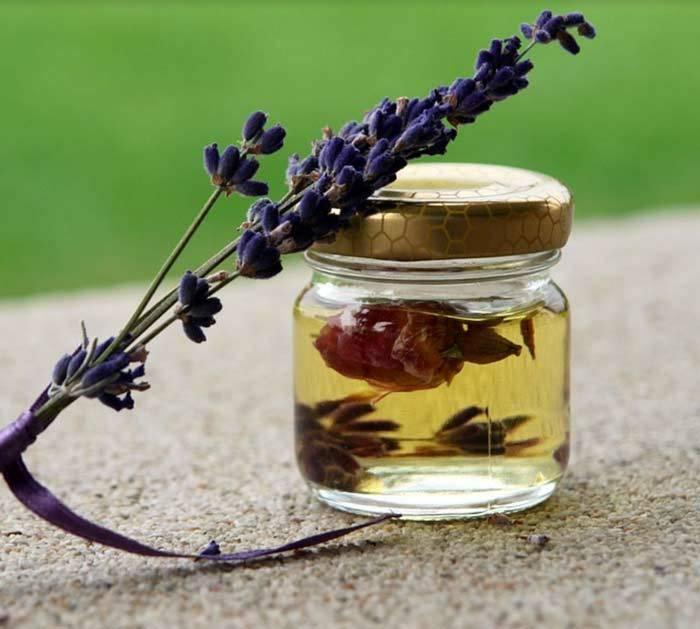 Защитит ли эфирное масло гвоздики от клещей: эффективность средства