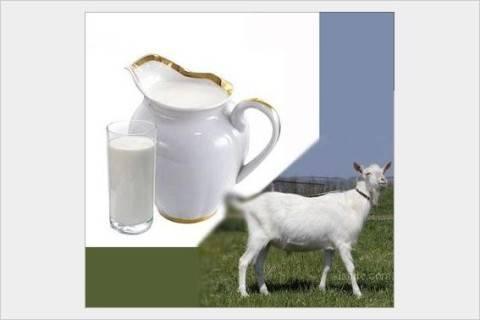 Можно ли заразиться энцефалитом от молока