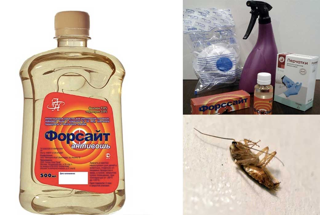 Форсайт от тараканов (ловушка, гель, средство): инструкция