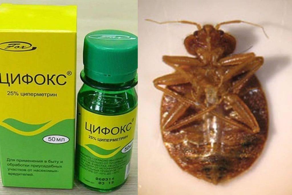 Цифокс от тараканов