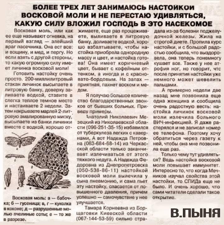 Настойка восковой моли (огневки): лечение, где лучше купить, отзывы - апиариум