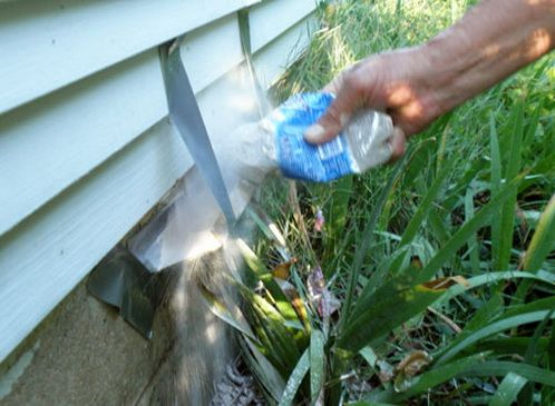 Топ-5 способов как избавиться от ос: на даче, под крышей