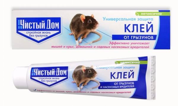 Описание марок клея от мышей и крыс, правила использования своими руками
