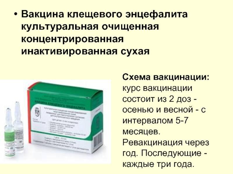 Прививка от клещей для собак – название, когда делать, цена, отзывы ветеринаров