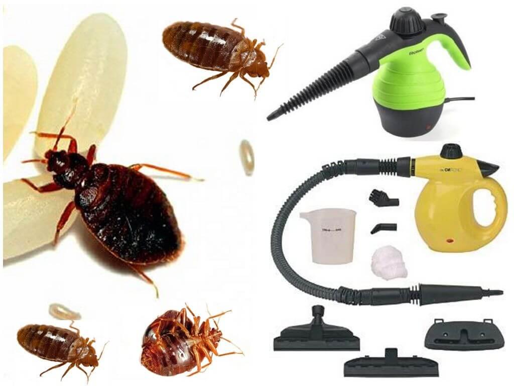 Сравнение пароочистителя и отпаривателя