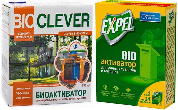 Как вывести опарышей из туалета. туалетная муха: способы борьбы с ней