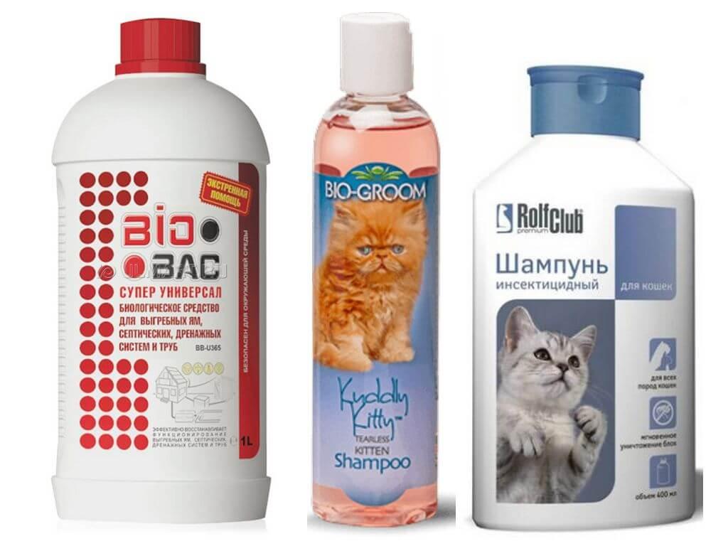 Рейтинг лучших шампуней от блох для кошек: производители, какие выбрать, рейтинг топ-7