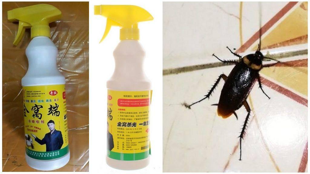 Средство от тараканов - самые эффективные профессиональные, химические и народные