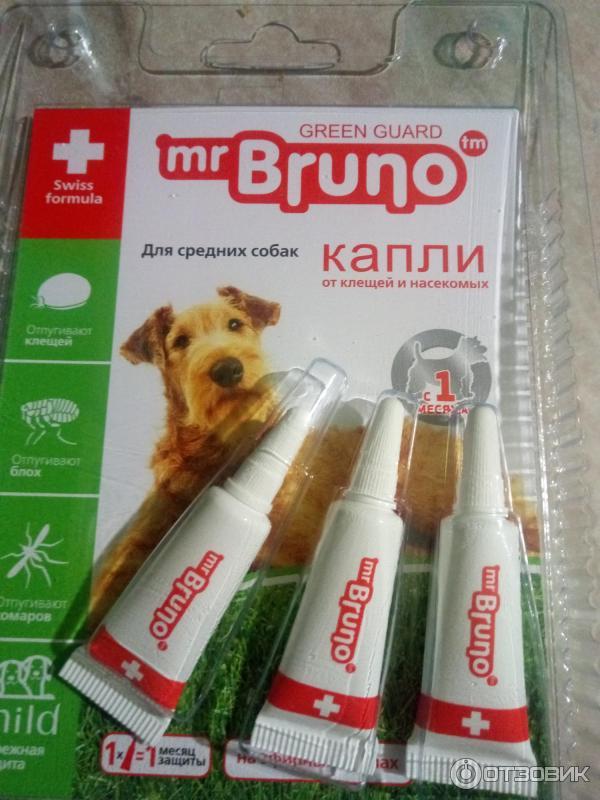 Средство от блох для собак: симптомы заражения, средства