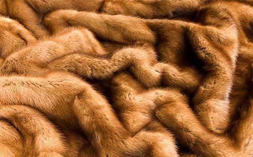 Как хранить шубу зимой и летом в домашних условиях | меховой стиль