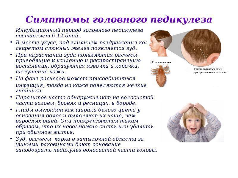 20 заболеваний кожи головы: симптомы болезни и лечение волосяного покрова и волосистой части - причины