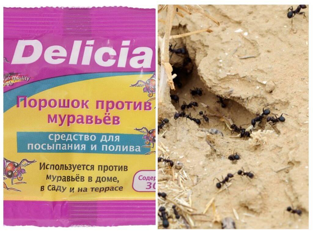 Delicia (делиция) порошок против муравьев, 500 г