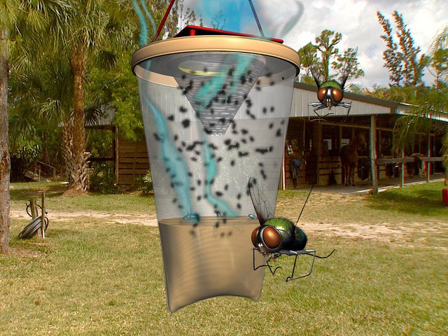 Ловушка для мух своими руками: как сделать эффективную и долговечную самодельную мухоловку (105 фото и видео)