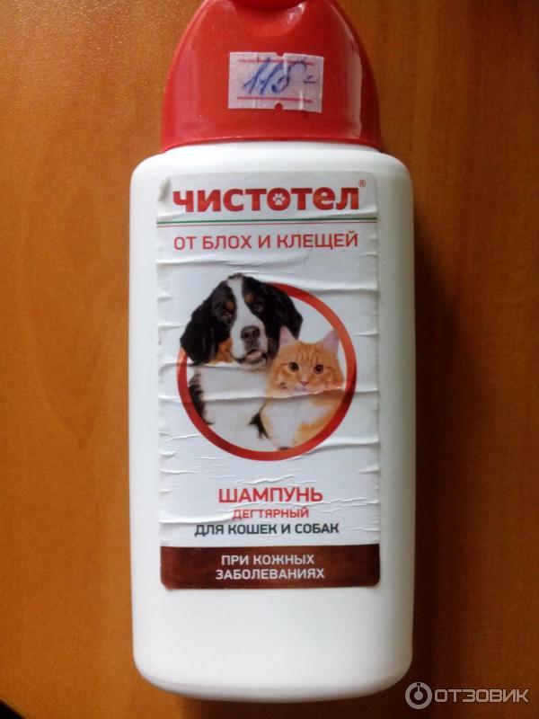 Шампунь от блох для щенков и собак: выбираем подходящее средство