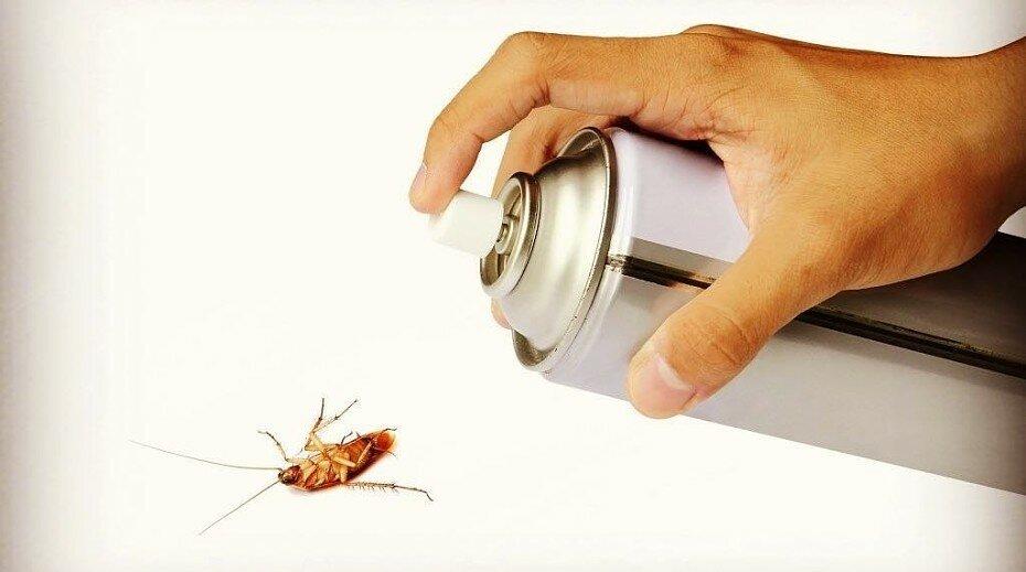 Get гет от тараканов инструкция