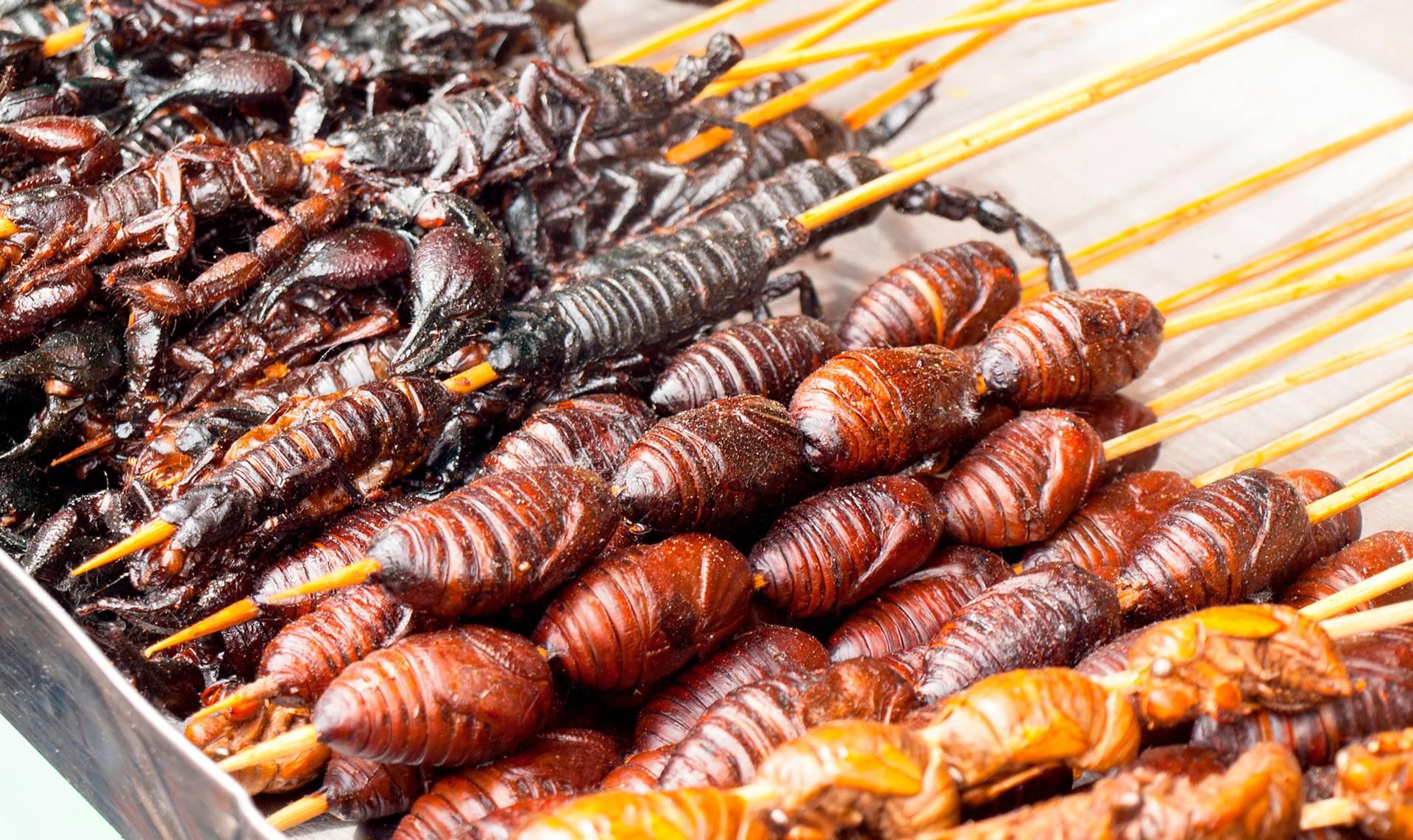 19 удивительных фактов о тараканах - уничтожение вредителей