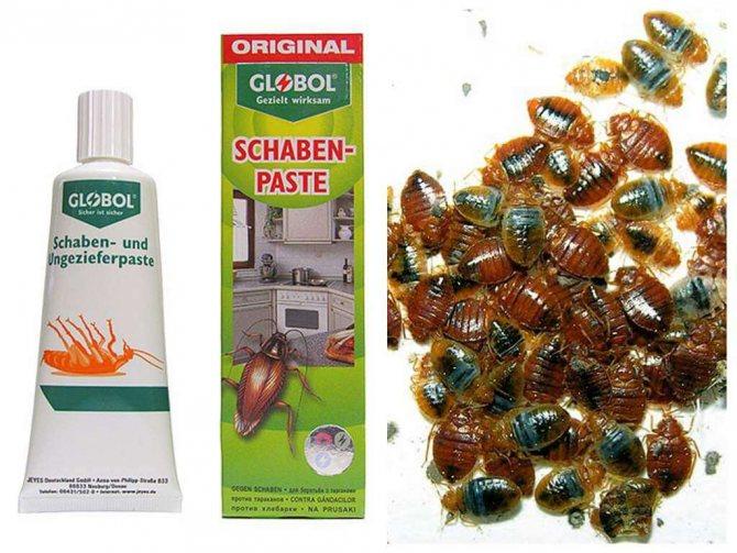 Средство глобал от тараканов (globol): как применять. обзор