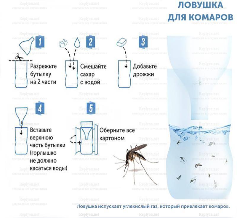 Как избавиться от комаров в квартире: народные и современные средства