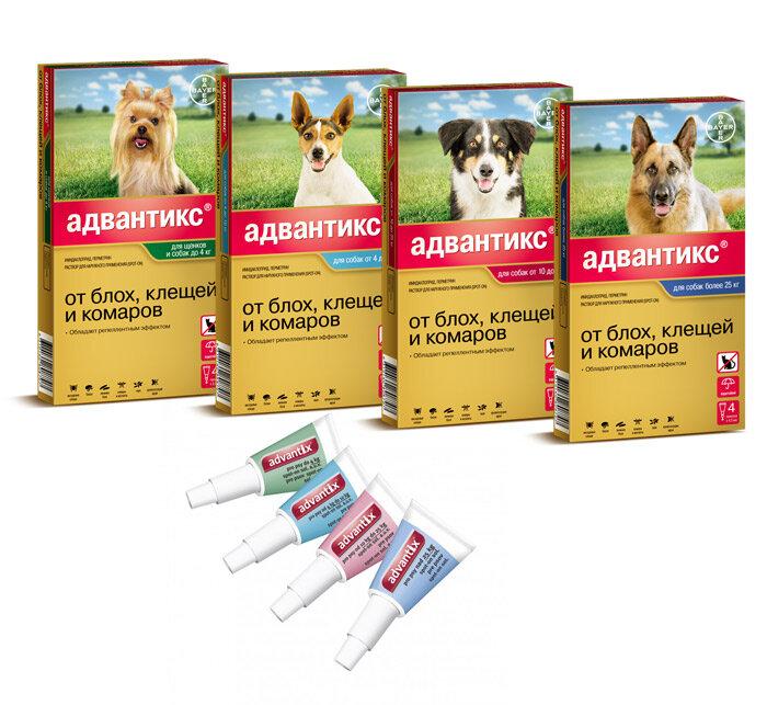 Адвантикс / advantix (капли) для собак | отзывы о применении препаратов для животных от ветеринаров и заводчиков