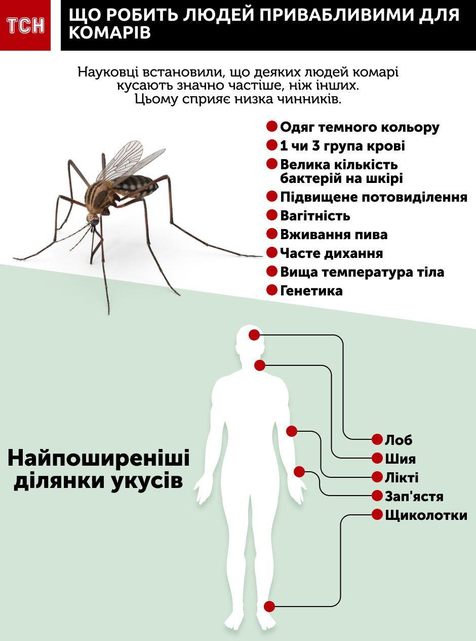 Зачем комары пьют кровь человека: для чего кусают, взаимосвязь с размножением