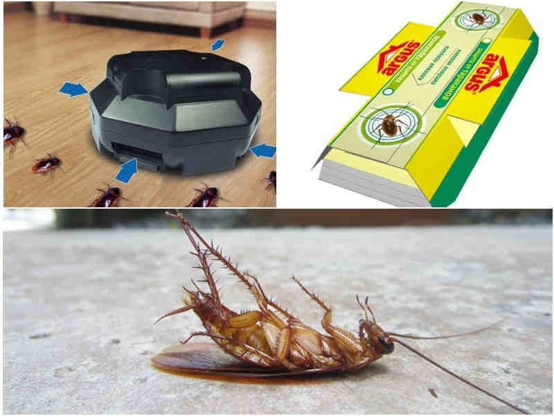 Ловушки рейд от тараканов: описание, инструкция по применению и отзывы