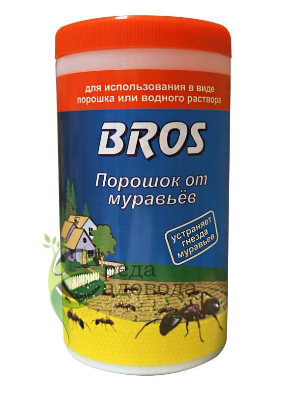 Эффективное средство от домашних муравьев: 15 лучших средств