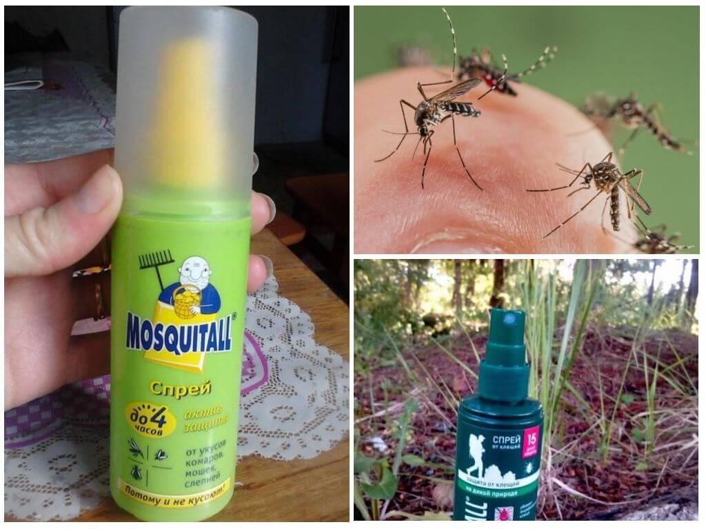 Комар не пройдет: лучшие средства для фумигаторов и браслеты 2020
