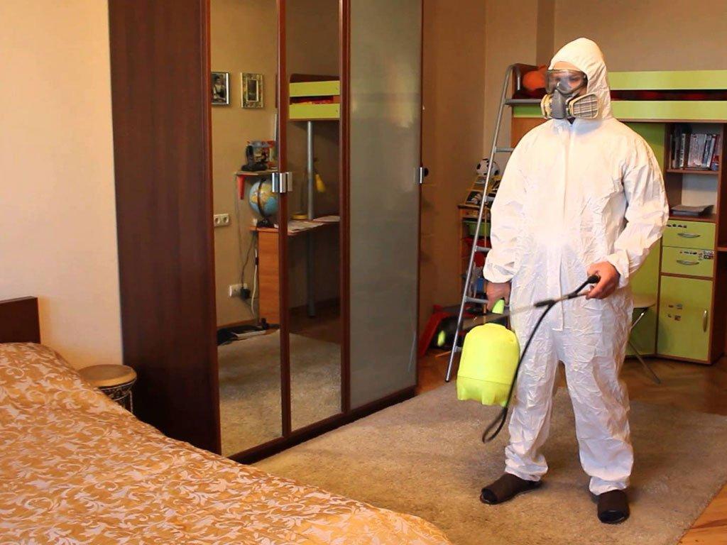 Как провести дезинфекцию от постельных клопов в квартире : чем убрать запах после обработки