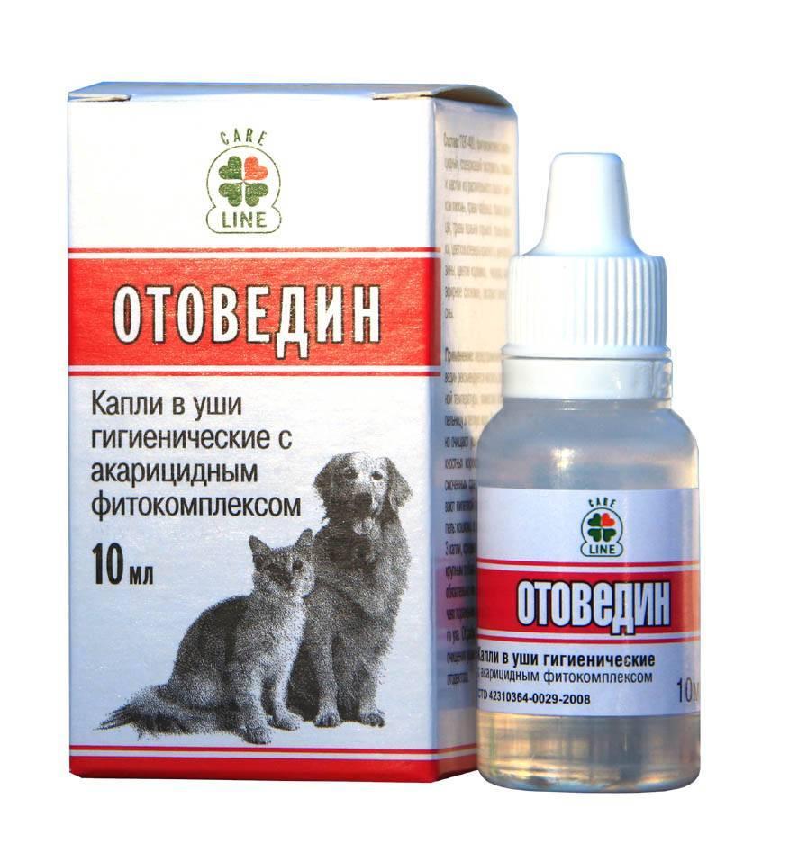 Капли от ушного клеща для кошек - описание, способы применения