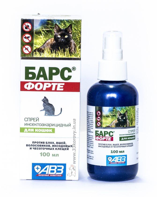 Лучший гель от тараканов, краткий обзор эффективных препаратов