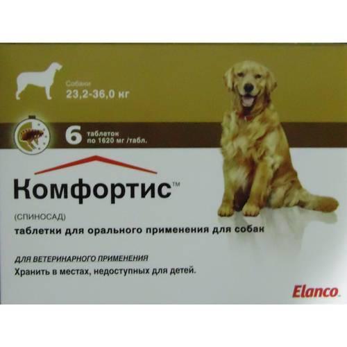 Комфортис для собак: инструкция по применению таблеток от блох и клещей с дозировкой и аналогами