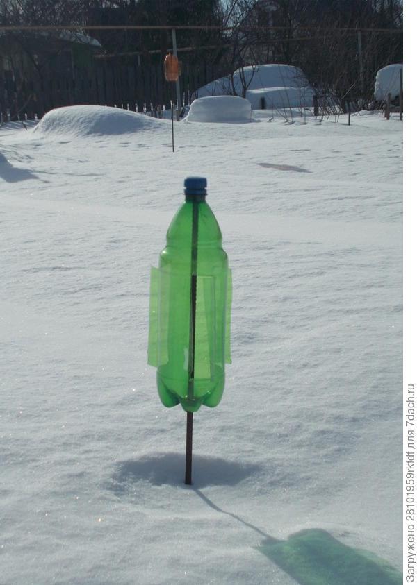 Отпугиватель кротов из пластиковой бутылки своими руками